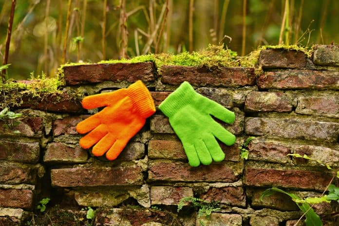 담장에 오렌지색과 연두색 장갑이 놓여 있다.